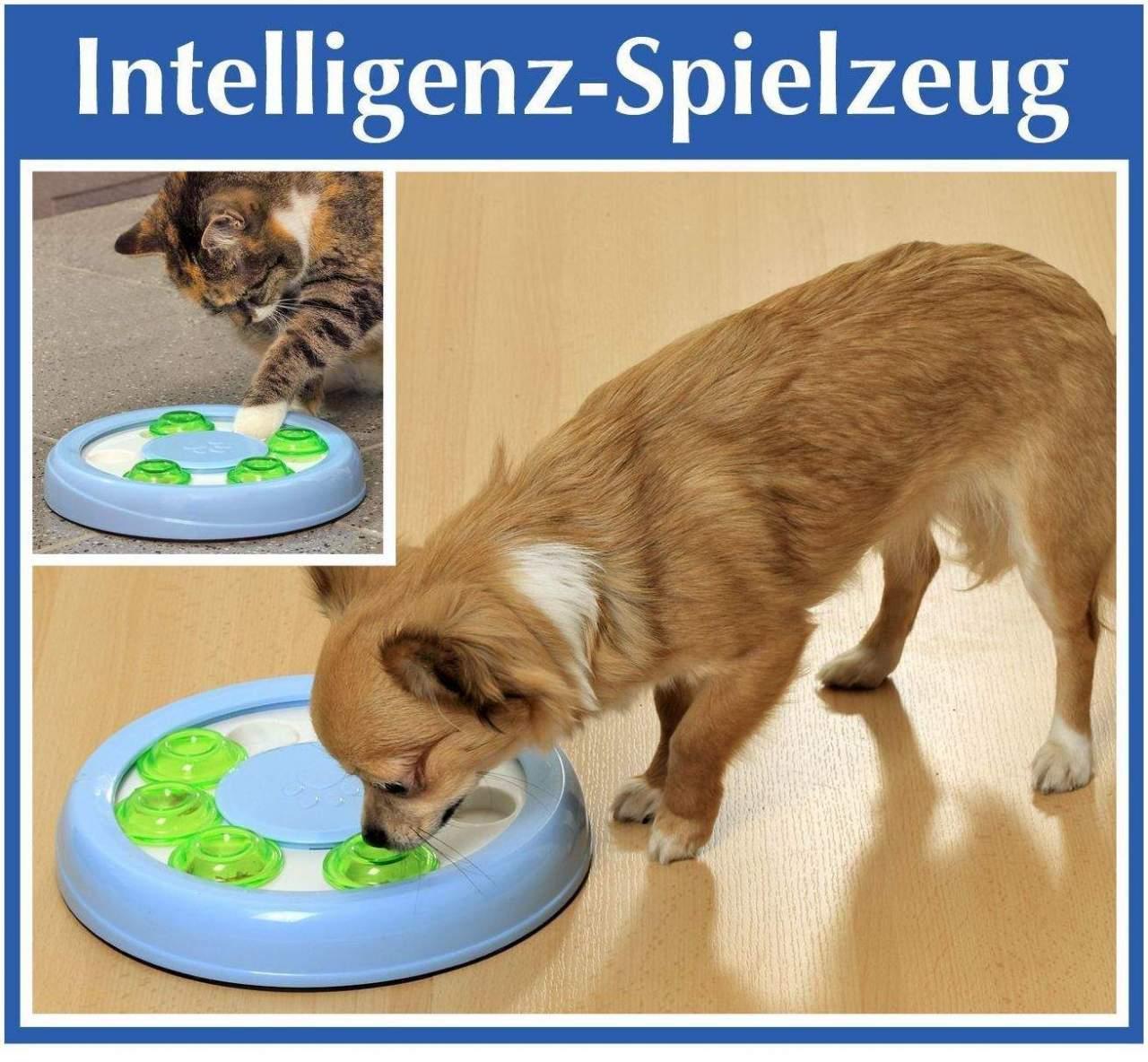 Intelligenz- Spielzeug