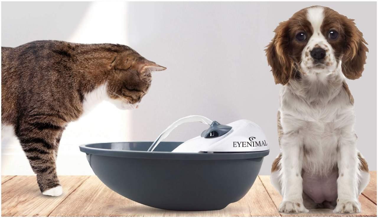 Trinkbrunnen für Hunde & Katzen
